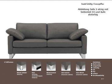 ewald schillig conceptplus sofa 2 sitzer mit armlehnen. Black Bedroom Furniture Sets. Home Design Ideas