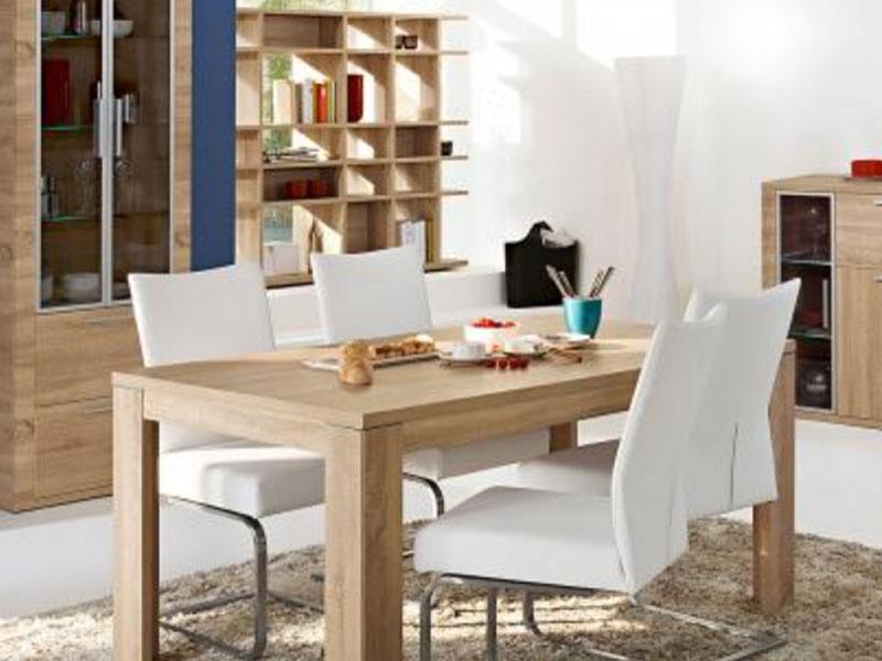 essgruppe 5 teilig arte m cool f r esszimmer speisezimmer 4x freischwinger set esstisch cool. Black Bedroom Furniture Sets. Home Design Ideas